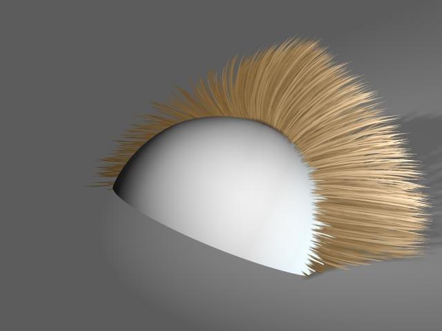 hairtest13.jpg