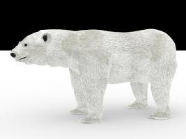 polarbear_2_ao_0.jpg
