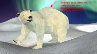 polarbear_0_question.jpg