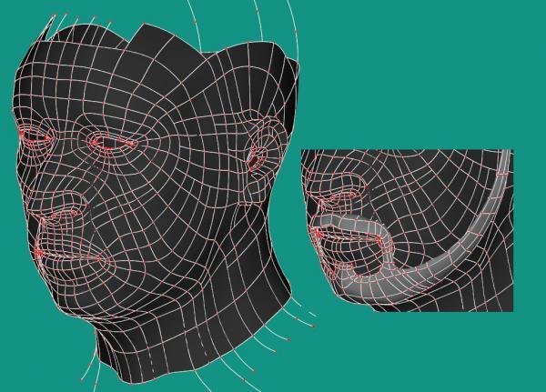 Head Retopo Splines.jpg