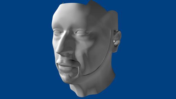 Test Head Retopo.jpg