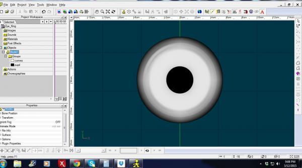 King_eye.JPG
