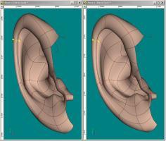 ear3D.JPG