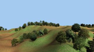 forestA0.jpg