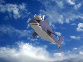 shark18.jpg
