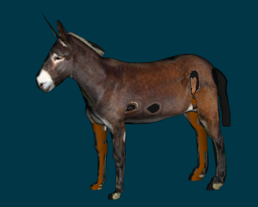 Burro with holes.png