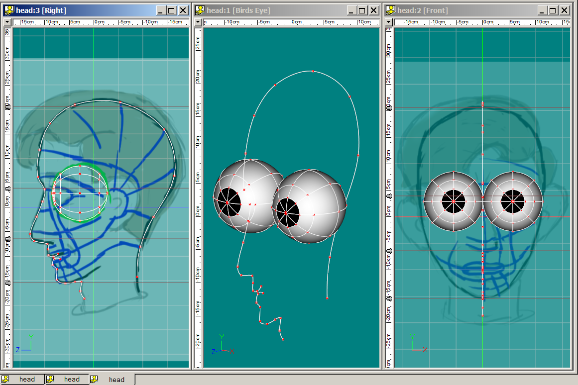 Headprofile&Eyes.PNG