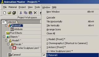 AM_windows.jpg
