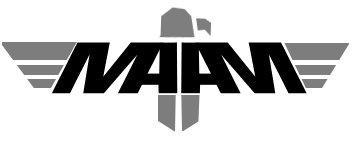 maam_squad_logos_IronBird.jpg