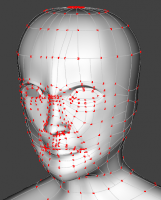 Rick5_Head_Wireframe.png