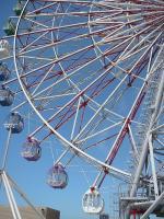 1_1287719985_the_ferris_wheel.jpg