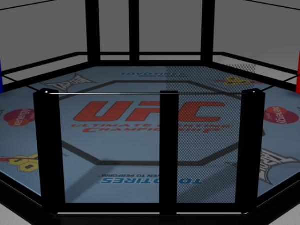 Octagon with fence0.jpg