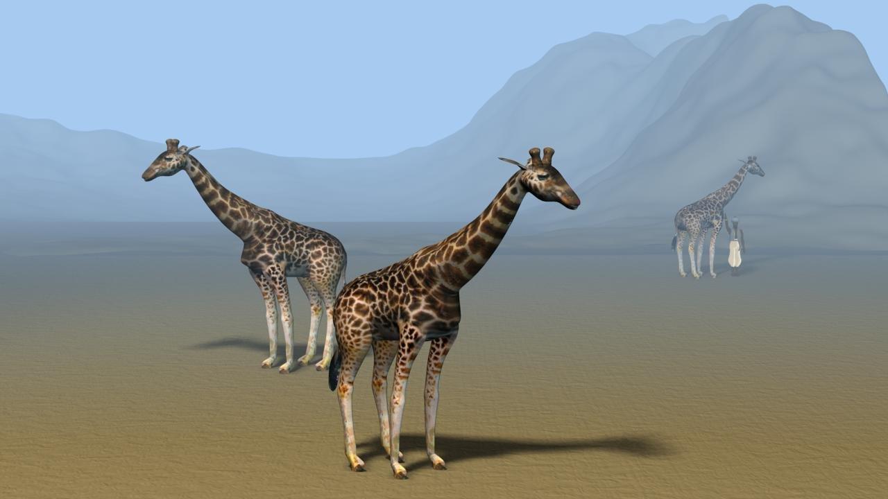Ex11 - Giraffe.jpg