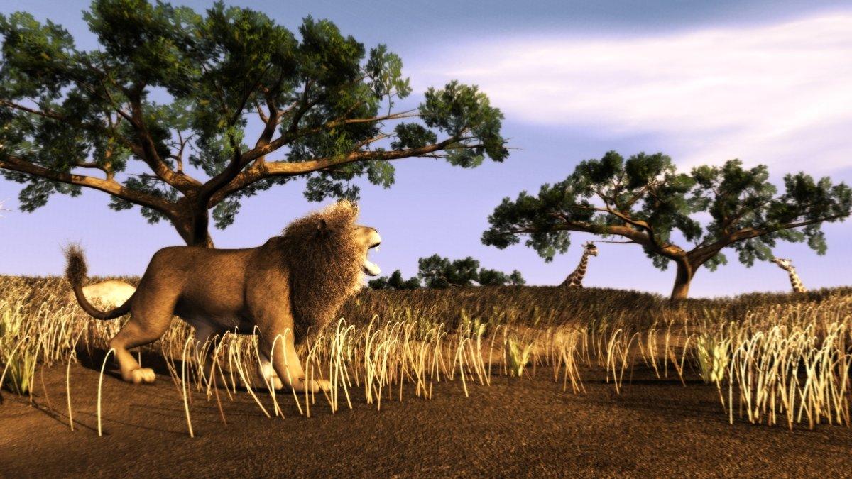 lion~0.jpg