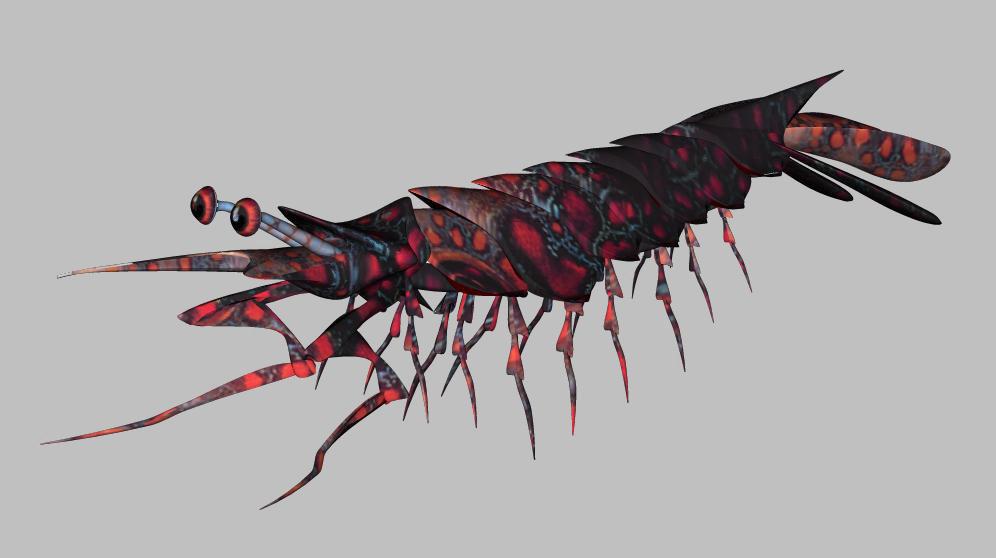 Jurassic Shrimp