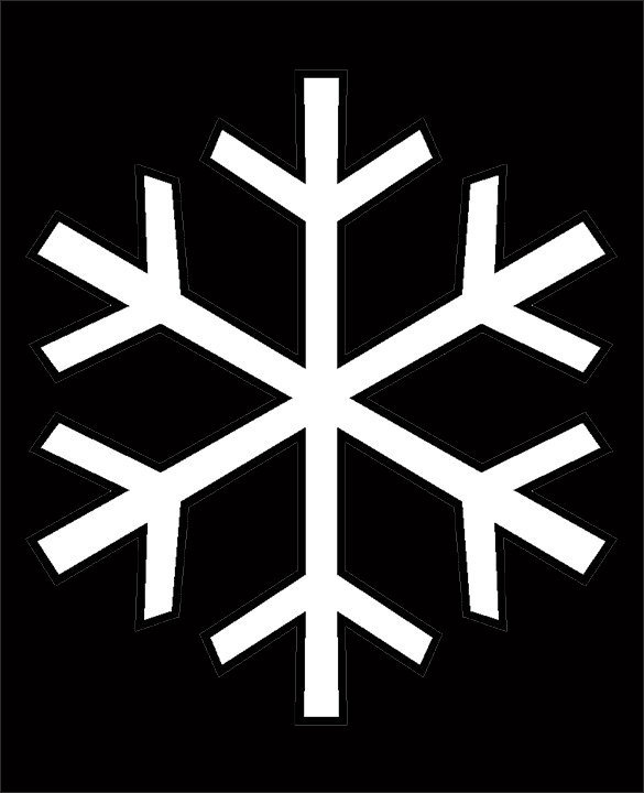 Snowflake,tga.jpg