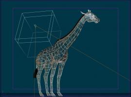 GiraffeHair.jpg