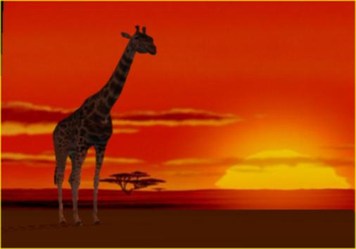 sunset_giraffe.jpg